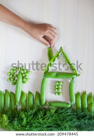 Playing with vegetables, child's kid's hand making picture of pod of peas and fennel. Cooking at home or  learning at culinary class.