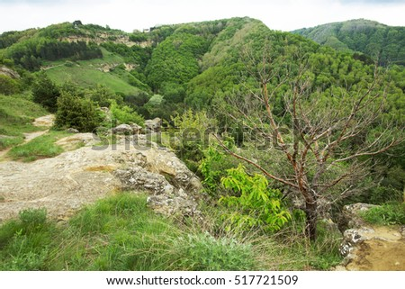pleasant hilly landscape