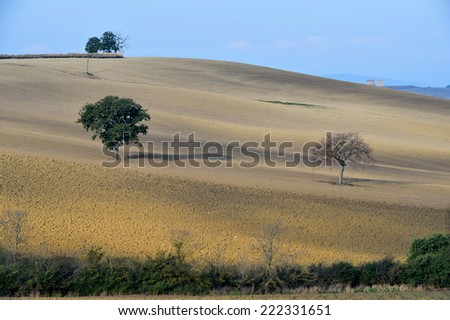 Pleasant view of plowed fields, in the rolling hills in Tuscany - stock photo
