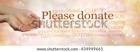 Please donate to our cause - campaign banner with female cupped hands on left and a word cloud surrounding 'PLEASE DONATE' on a peach bokeh sparkling background - stock photo