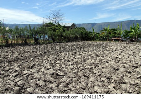 Plough farm field on the Samosir island, Indonesia