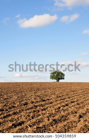 Ploughed Field - stock photo