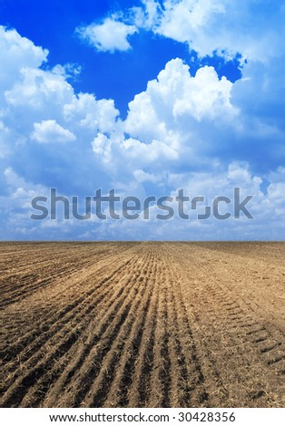 Ploughed field.
