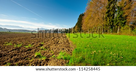 Ploughed Field near the Forest, Swiss Alps - stock photo