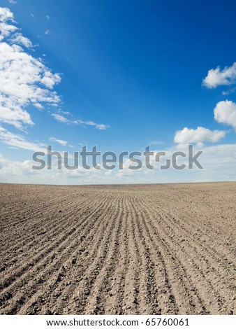 ploughed field under blue sky - stock photo