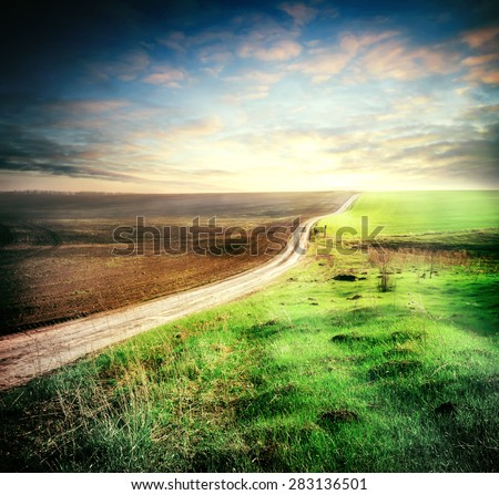 Plowed and sown field with crosses his way under the night sky - stock photo