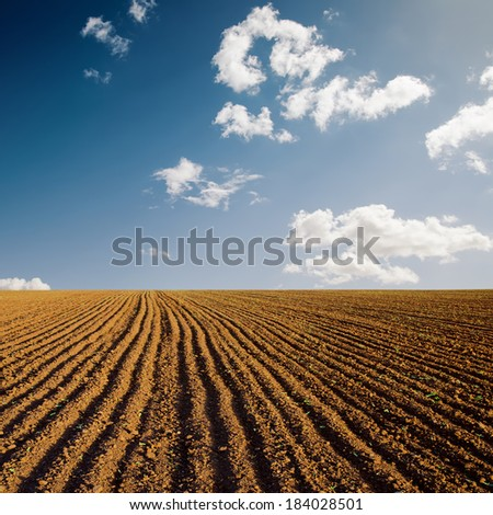 plowed field and blue sky in sunset - stock photo