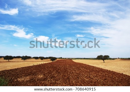 plowed field at Alentejo region, south of Portugal
