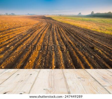 plowed field landscape with wooden floor - stock photo