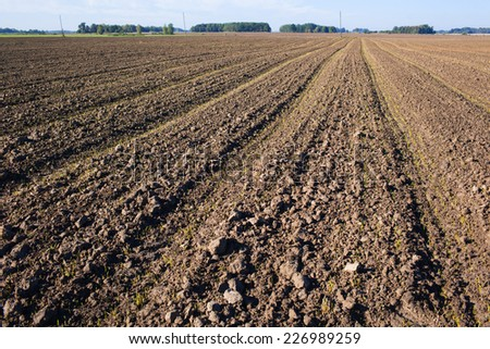 plowed field with tractor traces in autumn time - stock photo