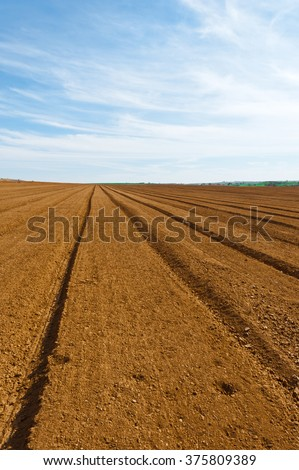 Plowed Fields in Israel