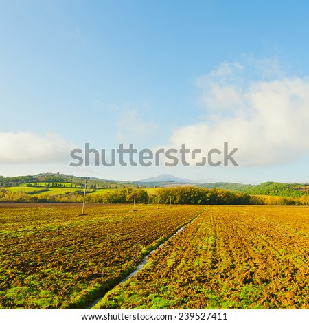 Plowed Sloping Hills of Lazio in the Autumn