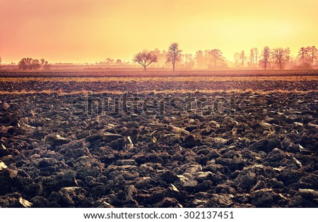 plowed soil. spring field. sunset over ploughed field. Countryside landscape. vintage cross-processed style. Vintage look. Instagram filter. - stock photo