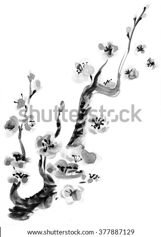 Plum blossom. Picture in east style by India ink, sumi-e. - stock photo