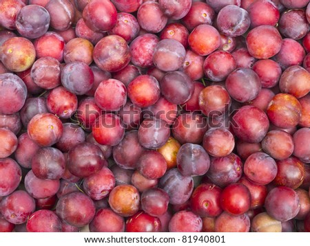 Plum harvest texture for background