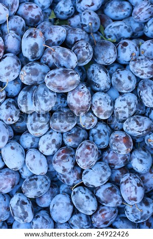 Plum on the market for background - stock photo