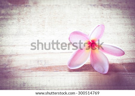 Plumeria on the wooden floor-vintage effect style pictures - stock photo