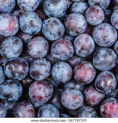 Plums Background - stock photo