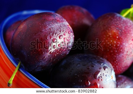 Plums. Fresh ripe washed plums in a ceramic bowl close-up on a blue gradient background.