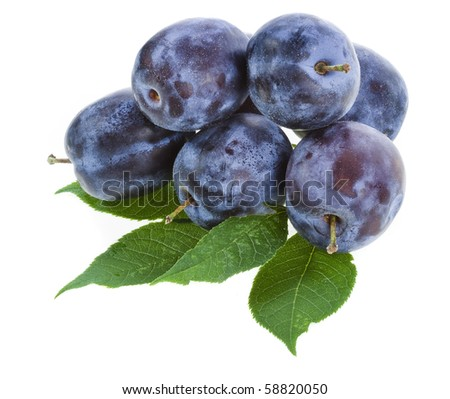 Plums on white background  - stock photo