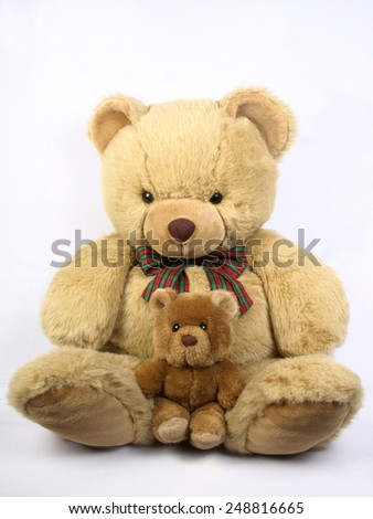 plush bear - stock photo