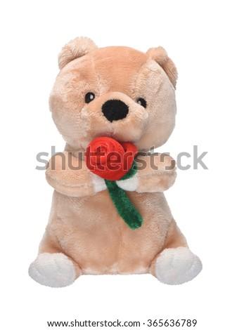 plush toy bear isolated on a white background - stock photo