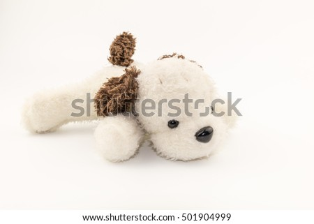 Plush toy dog on white background texture
