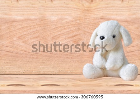 Plush white dog with a wooden background. - stock photo