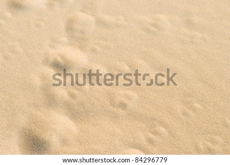 Pockets in the Sand