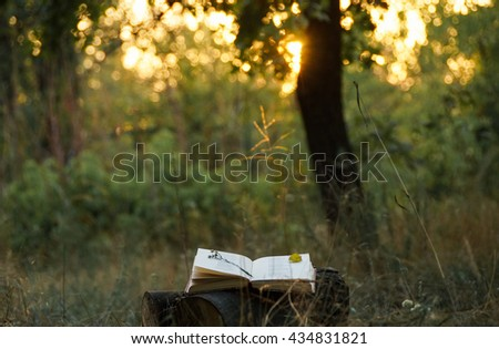 Poetry book under tree and blurs of summer sunset background