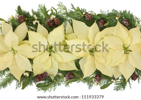 Poinsettia flower arrangement with mistletoe, cedar leaf sprigs and pine cones over white background. - stock photo