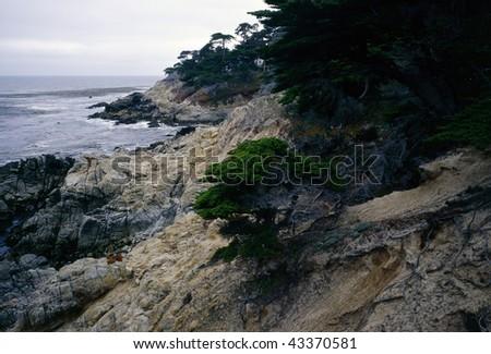 Point Lobos  on Monterey Bay in California - stock photo
