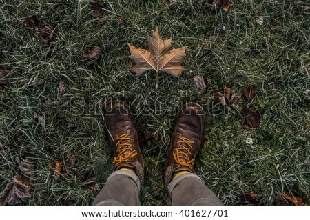 point-of-view of a man standing on the frozen grass and one frozen leaf