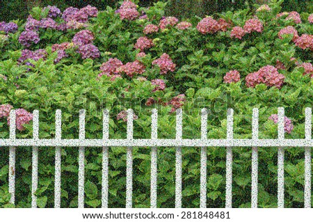 Pointillist abstract of white picket fence before luxuriant bushes with green leaves and pink chrysanthemums in front yard garden, summer in New England