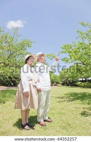 Pointing Japanese elderly couple - stock photo
