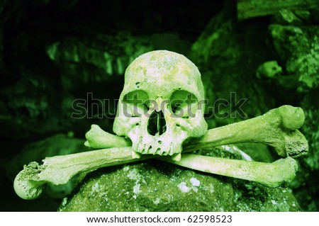 Poisonous colored skull in a Toraja cavern - stock photo