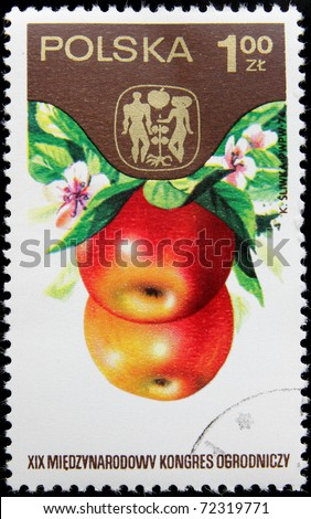POLAND-CIRCA 1974: A post stamp printed in Poland shows Apples devoted 19th International Horticultural Congress in Warsaw, series , circa 1974 - stock photo