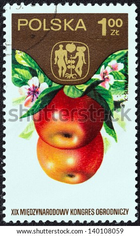 "POLAND - CIRCA 1974: A stamp printed in Poland from the ""19th International Horticultural Congress, Warsaw. Fruits, Vegetables and Flowers"" issue shows Apples, circa 1974. - stock photo"