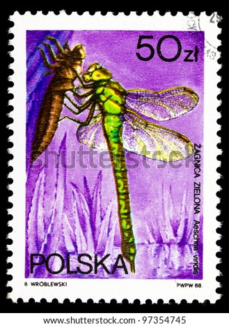 """POLAND- CIRCA 1988: A stamp printed in PolAND shows a drawing of the insect called """"zagnica zielona"""", series, circa 1988 - stock photo"""