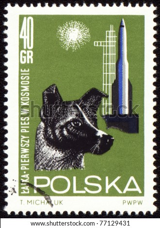 POLAND - CIRCA 1963: A stamp printed in Poland shows first dog Laika in space, series, circa 1963 - stock photo