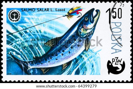 "POLAND - CIRCA 1979: A Stamp printed in POLAND shows image of a Atlantic Salmon with the description ""Salmo salar"" from the series ""Fish and Environmental Protection Emblem"", circa 1979"