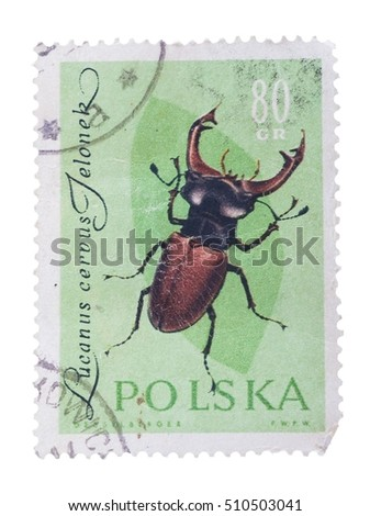 POLAND - CIRCA 1980: A Stamp printed in POLAND shows image of a lucanus cerous jeloner beetle, from series - entomofauna, circa 1980