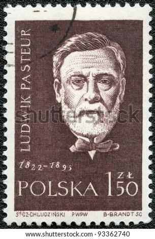 POLAND - CIRCA 1959: A stamp printed in Poland shows Louis Pasteur (1822-1895), series, circa 1959 - stock photo