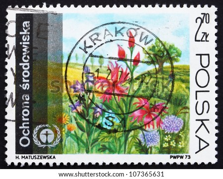 POLAND - CIRCA 1973: a stamp printed in the Poland shows Flowers on Meadow, Protection of the Environment, circa 1973 - stock photo