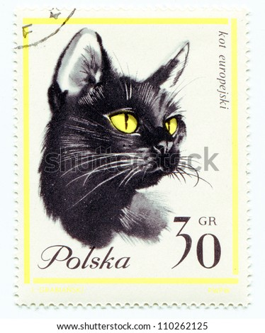 POLAND - CIRCA 1965: European cat on a vintage, canceled post stamp from Poland, circa 1965 - stock photo