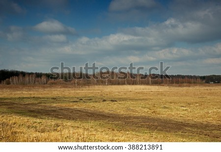 Poland meadows in Kampinos National Park, the beginning of March, early spring, a beautiful sunny day. Horizontal view.