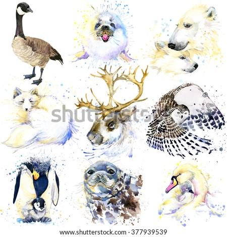 Polar animals set. Watercolor animal. Canadian goose, seal, seals, reindeer, snowy owl, fox, polar bear, mute swan - stock photo