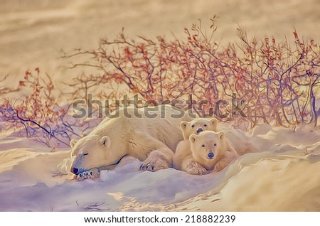 Polar bear and her cubs resting - stock photo
