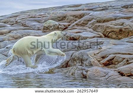 Polar bear coming from sea onto Arctic island, photo art - stock photo