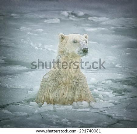 Polar bear coming through ice floe hole,digital oil painting - stock photo